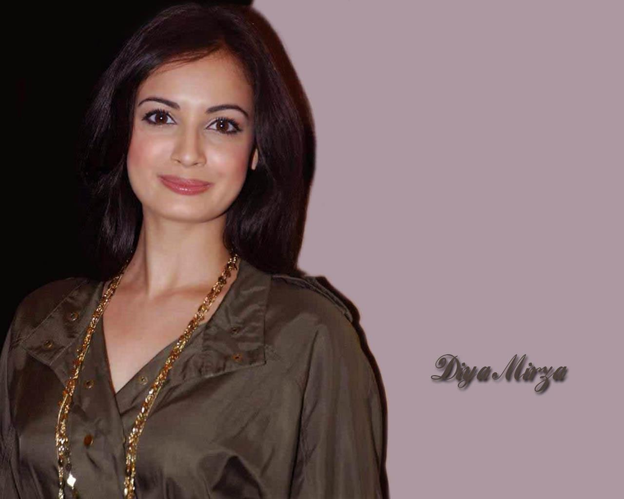 Hot And Sexy Bollywood Actress Diya Mirza Wallpapers  Huge Collection -8882