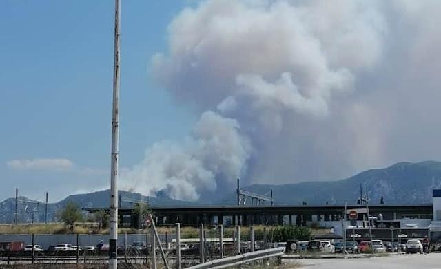 Ανεξέλεγκτη η φωτιά στις Κεχριές κινείται προς Αθίκια - Εντολή εκκένωσης του χωριού (βίντεο)
