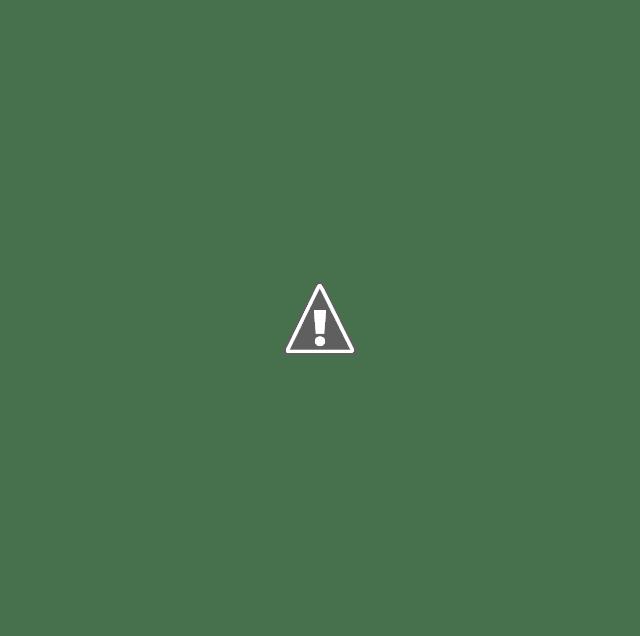 Beautiful Resort Inspired Backyards 7