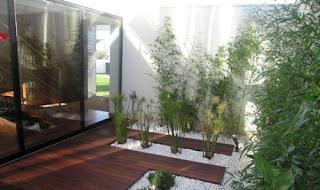Solusi taman sempit di belang rumah, inspirasi taman minimalis, solusi taman anda