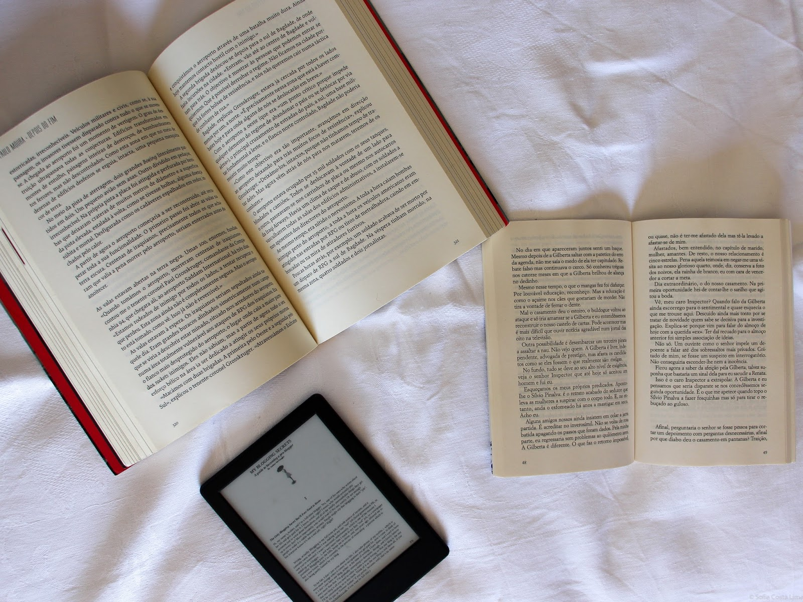 poligamia literária