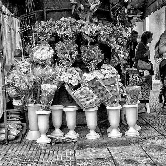 Un kiosco con plantas y flores para la venta.