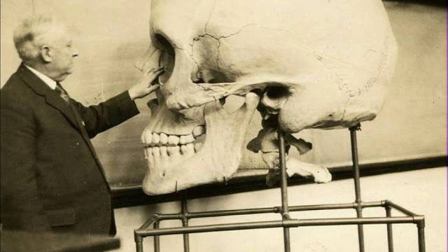 giants, skull