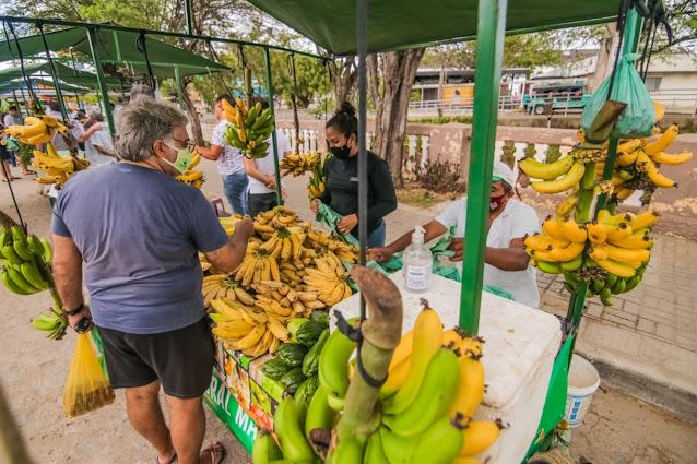 Feira da Agricultura Familiar de Caruaru oferece, semanalmente, frutas e verduras livres de agrotóxicos