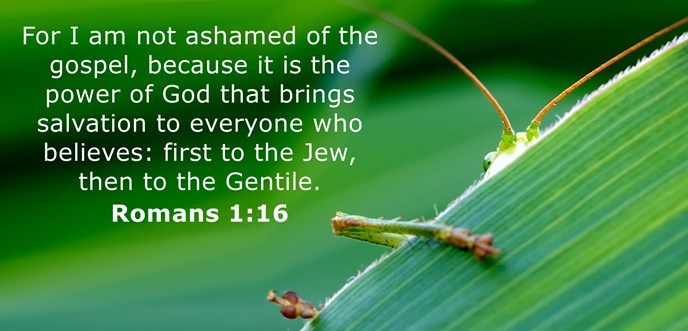 I am not ashamed of the gospel, because it is the power of God for the salvation of everyone who believes.