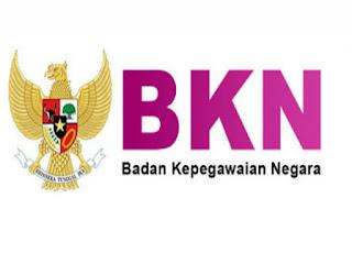 Sore Ini, BKN Membuka Portal Pendaftaran Honorer PPPK
