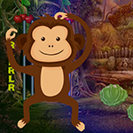 Games4King Little Monkey …