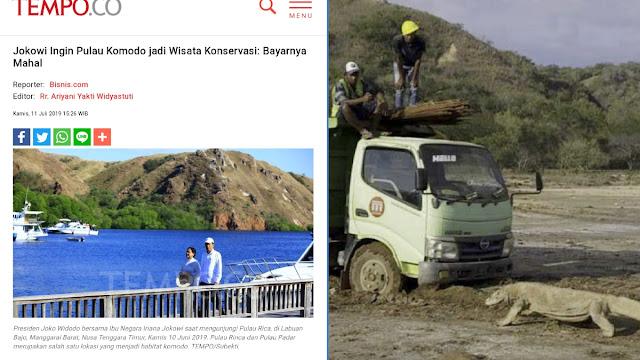 Viral Foto Komodo Hadang Truk Proyek Wisata di Pulau Rinca, Netizen Kecam Jokowi