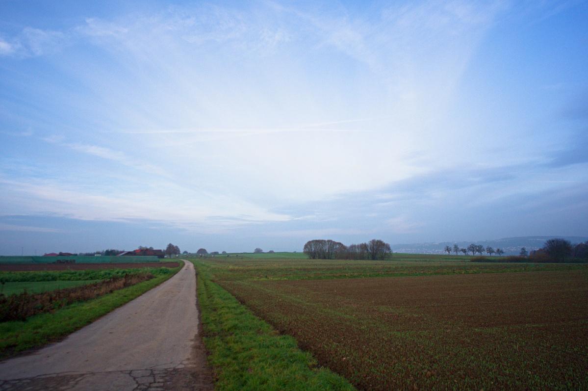 #215 Voigtländer Super-Wide-Heliar f4.5 15mm – Morgenspaziergang bei Reutlingen Reicheneck (7)