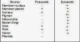 makalah biologi tentang sel
