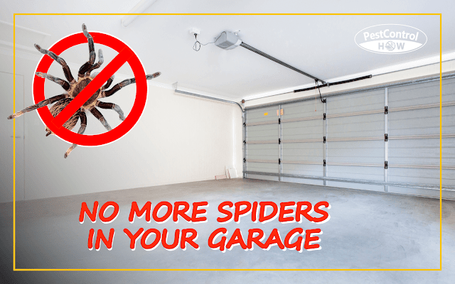 how-to-keep-spiders-out-of-garage