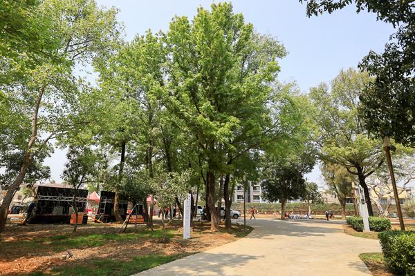 台中后里森林公園重新開放,聆聽花開的聲音機械花、四口之家好好拍