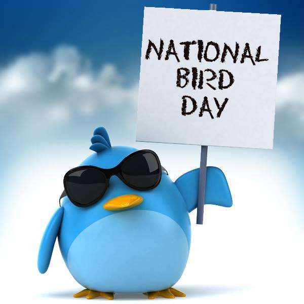National Bird Day Wishes Awesome Images, Pictures, Photos, Wallpapers