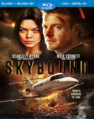 Skybound 2018 Dual Audio Hindi 480p BluRay HD Download