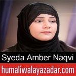 https://www.humaliwalayazadar.com/2019/09/syeda-amber-naqvi-nohay-2020.html