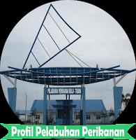 Uji Coba e-Profil Pelabuhan Perikanan Bulu-Tuban untuk Smartphone
