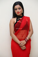 Aasma Syed in Red Saree Sleeveless Black Choli Spicy Pics ~  Exclusive Celebrities Galleries 071.jpg