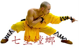 Estilo Louva-a-deus de Kung Fu