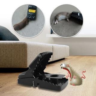 Perangkap Tikus Jebakan Mouse Trap Model Joni Cat Double Spring
