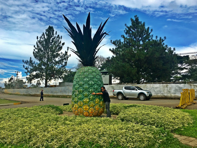 The Big Pineapple nearby Camp Phillips Entrance in Manolo Fortich