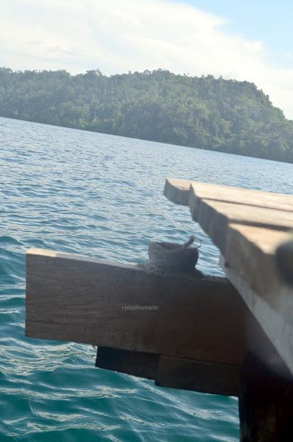 Berbagi rahasia di Talaip Homestay, Raja Ampat +jelajahkeluargasuwanto