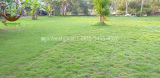 Rumput - garden style