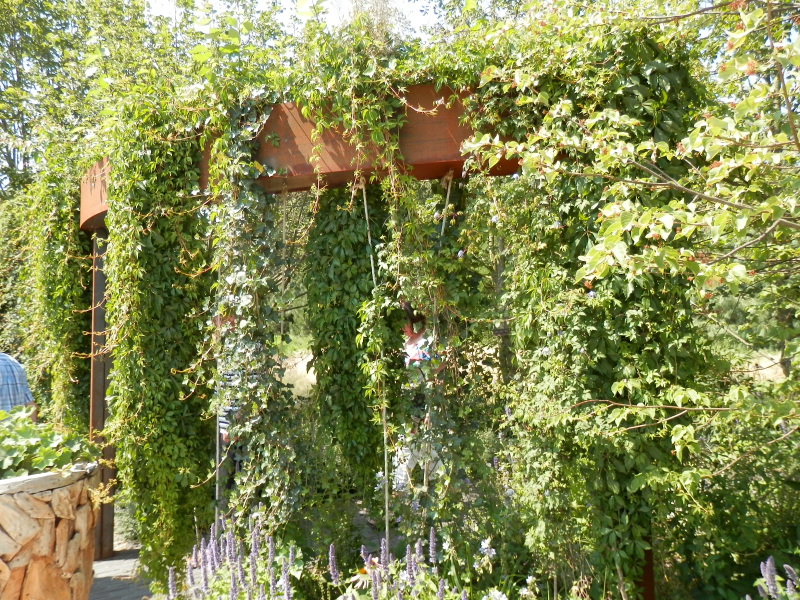Groene Afscheiding Tuin : Tuinweetjes pergola begroeide boog in tuinen