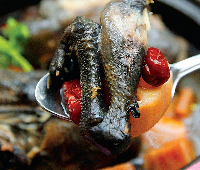 Healthy Black Chicken in Sapa 2