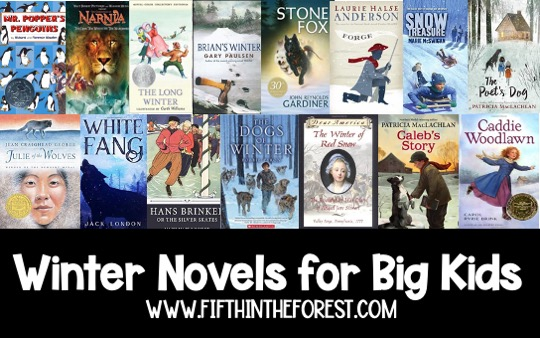 Pin image for 15 Winter Themed Novels for Upper Elementary
