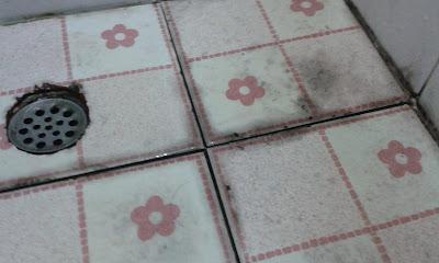 พื้นห้องน้ำ คราบราดำ