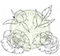 https://sklep.agateria.pl/pl/kwiaty/1506-peonia-zestaw-1-duzy-5902557830251.html