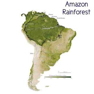 amazon forest in which country in hindi अमेजॉन का जंगल किस देश में है