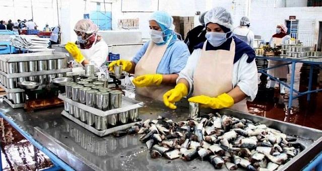 بؤرة آسفي.. وكيل الملك يقرر متابعة مسؤولين بوحدة صناعية لتصبير السمك بسبب الإخلال بالتدابير الوقائية مما أدى إلى تفشي كورونا وسط العاملات