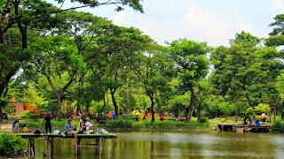 Taman flora kebun bibit Wonorejo