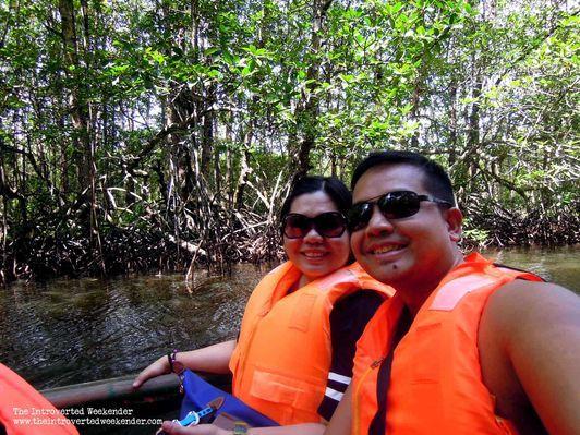 Mangrove forest tour in Puerto Princesa, Palawan