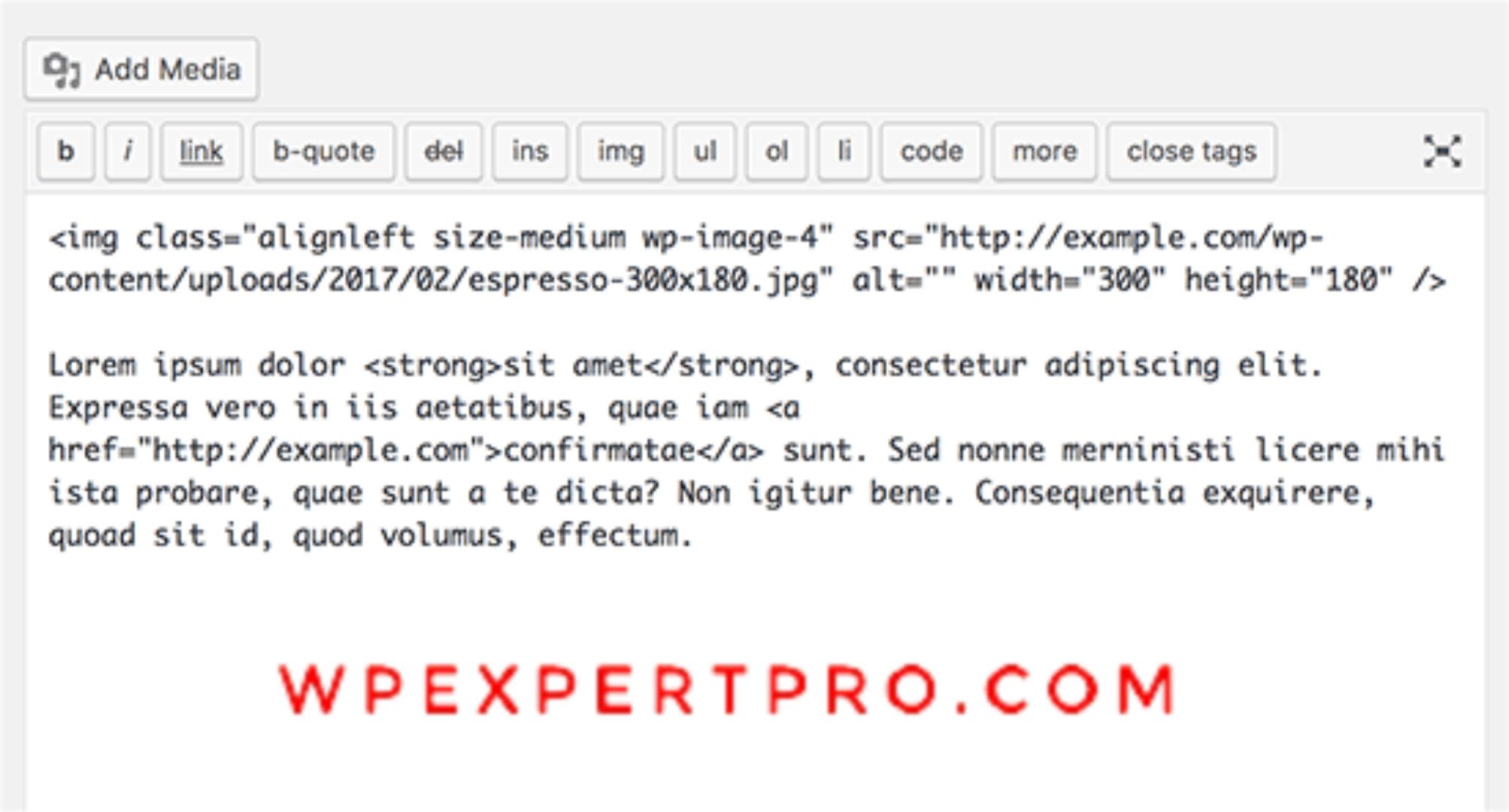 word editor in WordPress
