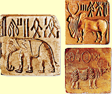 The Art of Indus Valley Civilization/Indus Valley seals with a Zebu Bull, Elephant, and Rhinooceros