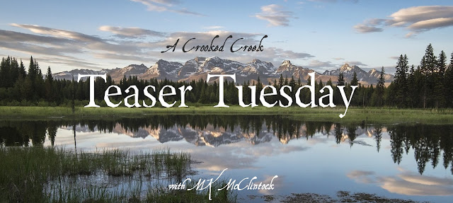 Teaser Tuesday with author MK McClintock