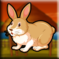 Pet Bunny Escape