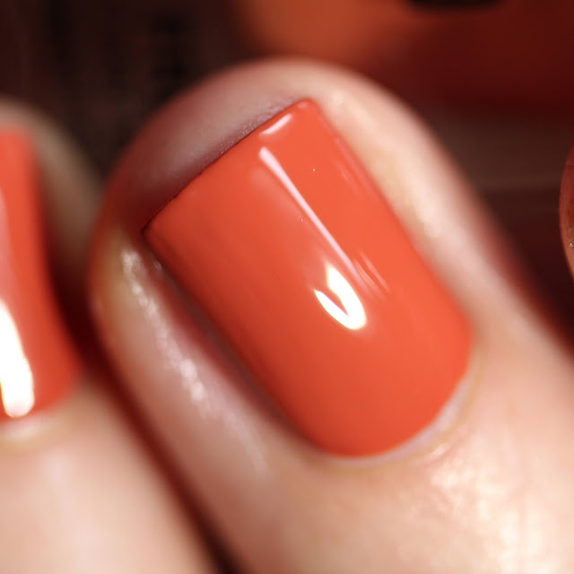 Dimension Nails Red-Tailed Hawk swatch