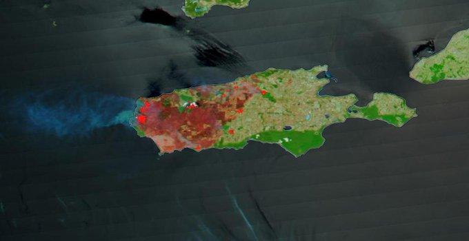 Austrália: um terço da Ilha Kangaroo foi destruído pelos incêndios