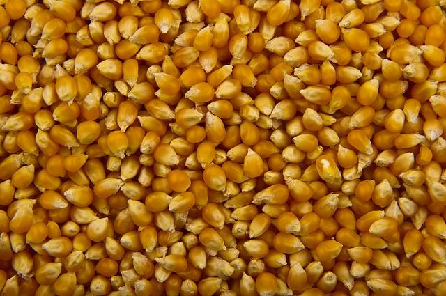 pop corn - allié minceur - produit minceur - produit naturel - minceur