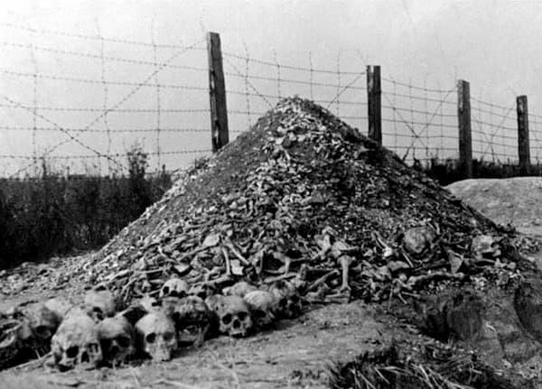 Restos mortais de Auschwitz