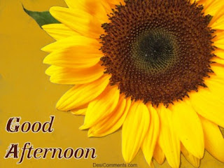 pics of good afternoon