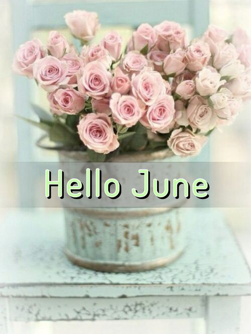 c94d77d82b6b59d103eb67616beab43e--june-quotes-june-flower.jpg