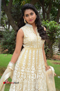 Actress Nithya Pictures in Long Dress at Nandini Nursing Home First Look Launch 0095