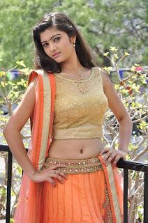 Actress Pallavi Naidu Stills in Half Saree at Lord Shiva Creations New Movie Launch 0010.jpg