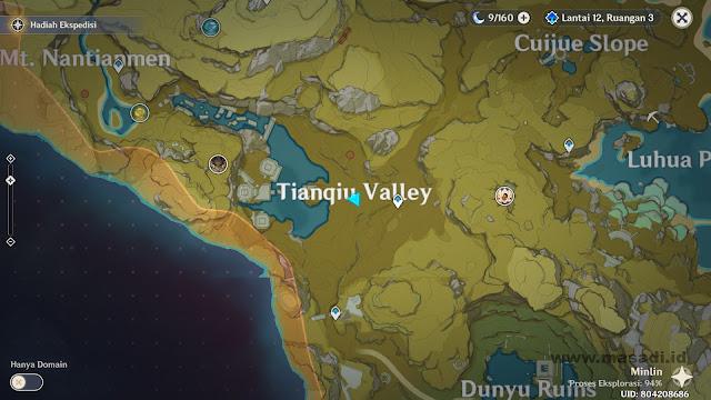 Map Genshin Impact