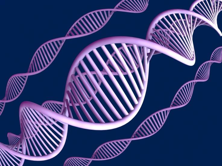 Fertile Ground: MTHFR and Gene mutations that effect pregnancy