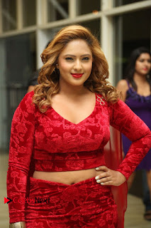 Actress Nikesha Patel Pictures in Red Dress at Araku Road Lo Audio Launch  0039.JPG
